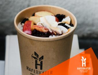 Gesamtbetreuung Haferkater GmbH